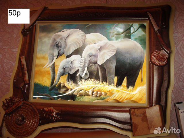 картинки с животными новые: