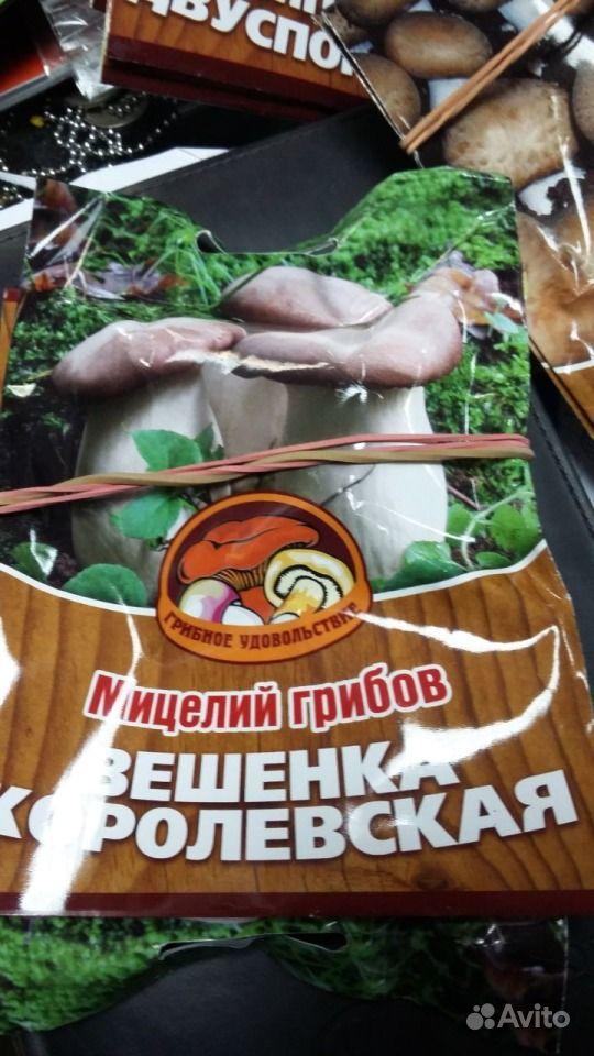 Семена грибов купить на Зозу.ру - фотография № 1
