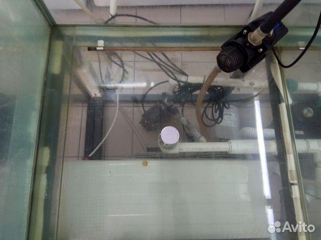 2 аквариума для продажи живой рыбы