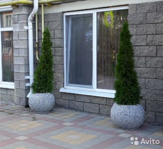 Вазон из бетона купить в белгороде цементный раствор для улицы