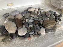 Камни морские