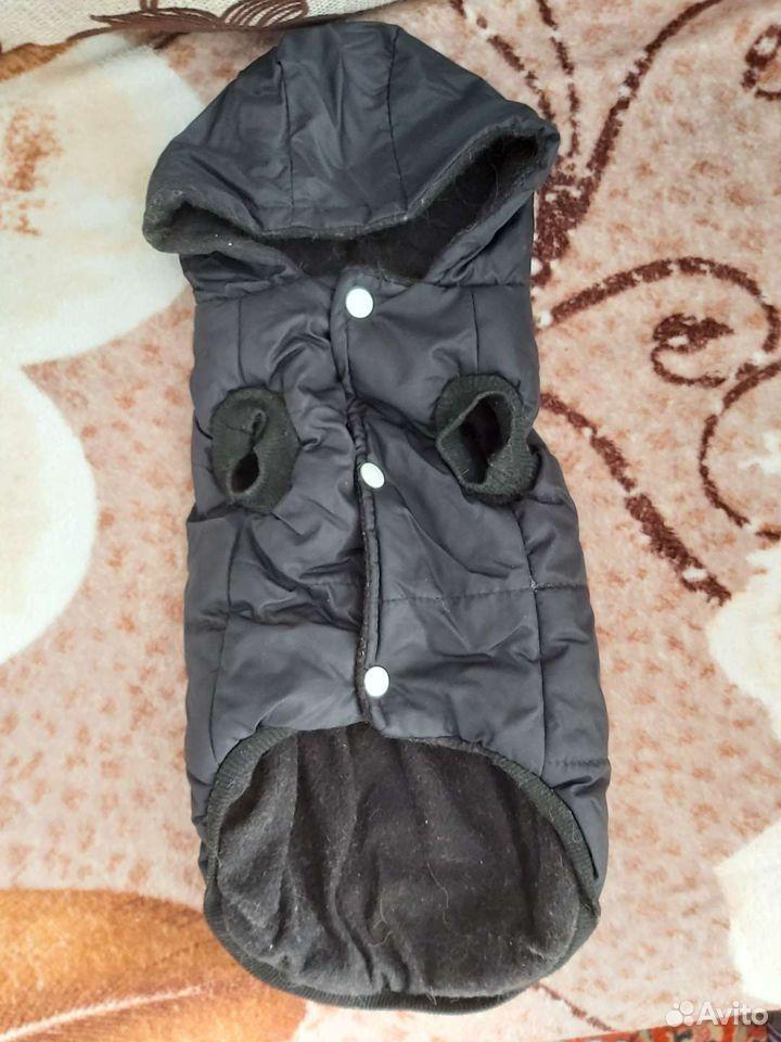Одежда на собачку  89527467196 купить 5